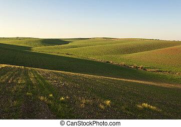 Rolling landscape in the fields of Alentejo, Portugal