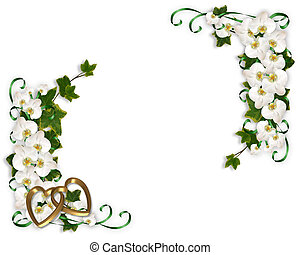 Ivy and Orchids Corner design - Illustration and image...