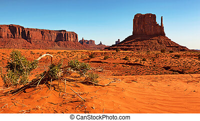 Monument Valley, Utah, USA Selective focus on fallen branch...