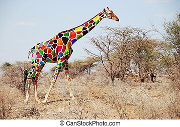 Giraffe  - Colorfull abstract  Girafee