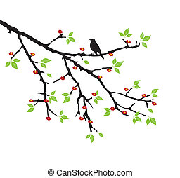 tree branch - vector tree branch with bird
