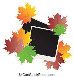 photos - vector blank photos and fall leaves