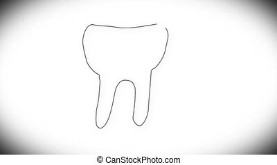 Human Tooth Structure 01 - Human Tooth structure animation...