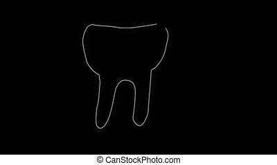 Human Tooth Structure 05 - Human Tooth structure animation...
