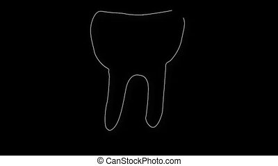 Human Tooth Structure 06 - Human Tooth structure animation...