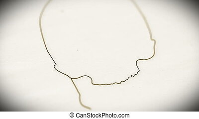 Human Skull v2 2