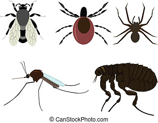 insects - vector set of cartoon insects