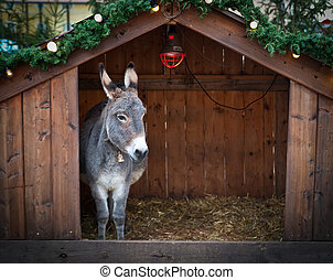 Donkey in a Christmas Stable - Donkey in a wooden Christmas...