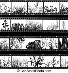 trees and plants film proof sheet - Photographs of trees and...