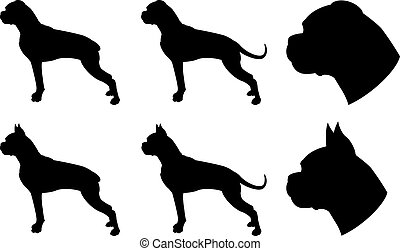 Boxer silhouettes - Boxers dog in different version, head...