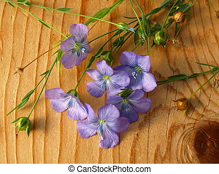 linum, flax lies on a board