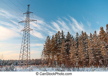 Power high-voltage poles in winter evergreen forest