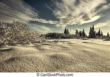 Deep snow on a sunny day