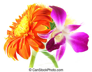 Small bouquet of Orchid and Gerbera over white background