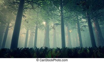 Deep Forest 2 - Deep Forest Fairy Tale Scene Fireflies 3D...