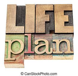 life plan in wood type