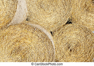 Straw bales - Detail of five straw bales - agricultural...