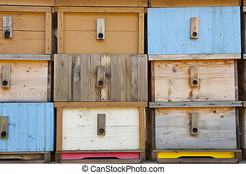 Brand new bee house - Detail of brand new multicolored...