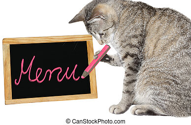 Cute cat writing on a menu board - Cute cat holding a pink...