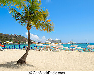 Beach with Palm Tree - Tropical beach with palm tree and...