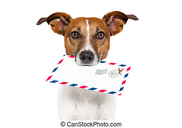 mail dog - dog with glasses delivering air mail envelope...