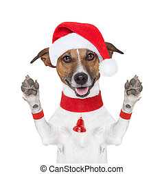 hello goodbye christmas dog - hello goodbye high five...