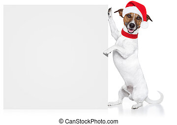 christmas dog placeholder santa baby
