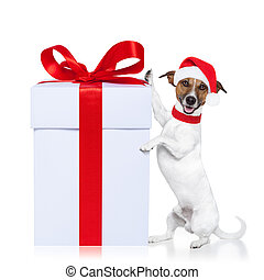 christmas dog santa  - christmas santa dog with a gift