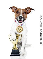 winner dog medal