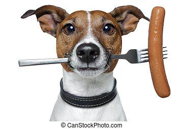 faminto, cão, linguiça, garfo