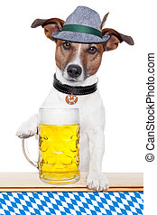 dog oktoberfest - oktoberfest dog with bavarian beer mug