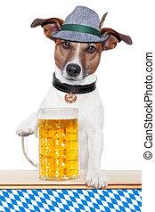dog oktoberfest - oktoberfest dog with bavarian beer mug