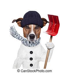 invierno, perro, pala, nieve