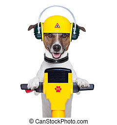handyman dog worker - handyman dog work in progress with...