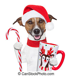 xmas dog with cup and candy cane - santa claus dog with...