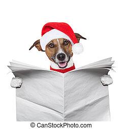 聖誕節, 狗