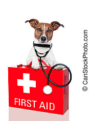 first aid dog - dog with a red  first aid kit