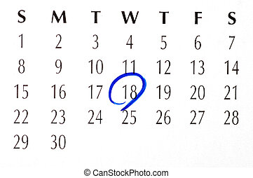 Important date circled on a daily month calendar