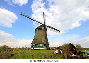 traditional windmills in dutch landscape - Traditional...