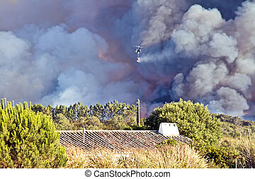Helicopters fighting the forest fire in the countryside from...