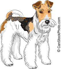 vector sketch dog Wire Fox Terrier breed standing - color...