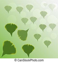 Ginkgo Biloba leaves .