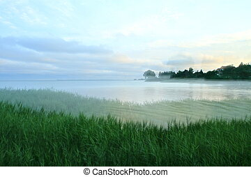 lake bank in the sun set - a lake bank in the sunset on a...