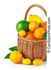 fresh citrus fruit in the basket with green leaf