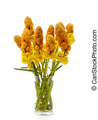 Ringworm bush flower arrangement. (Cassia alata ( L.) Roxb.)...