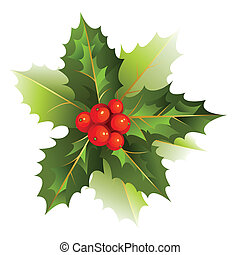 holly  - nice Christmas holly branch