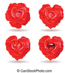 red roses - four red roses with valentine symbolics