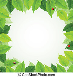 green leaves - frame with fresh green leaves and ladybirds