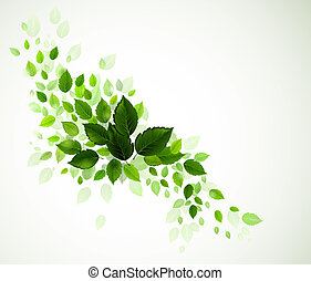 green leaves - branch with fresh green leaves