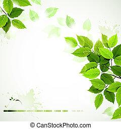 zielony, liście